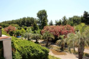 Территория, Дом отдыха Питиус в Пицунде, Абхазия